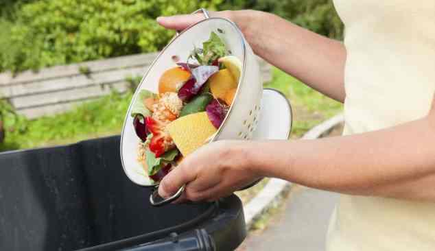 Gestão eletrónica do desperdício alimentar
